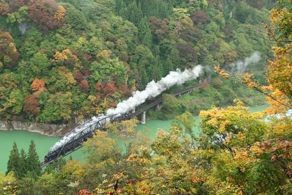201210284橋静止画dpp