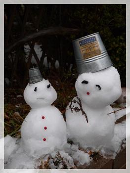 雪景色2014-1