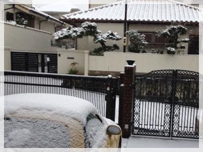 雪景色2014-5