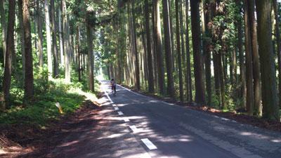 長良川沿い県道3