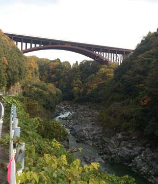 土岐川沿い高架道路を下から