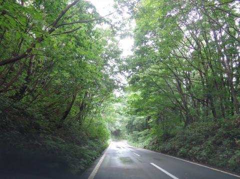 田沢湖56