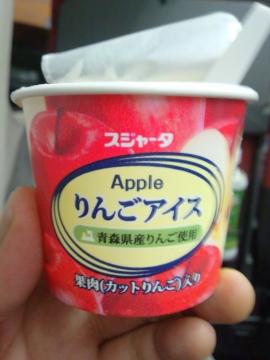 長野新幹線15