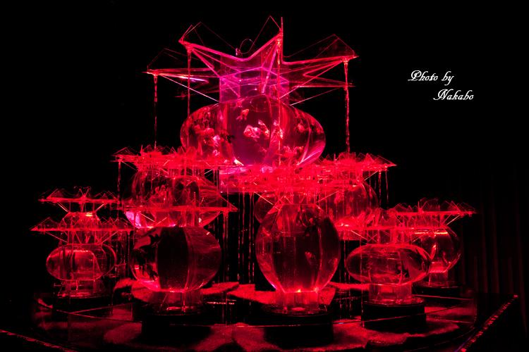 Art_Aquarium_2013-11.jpg