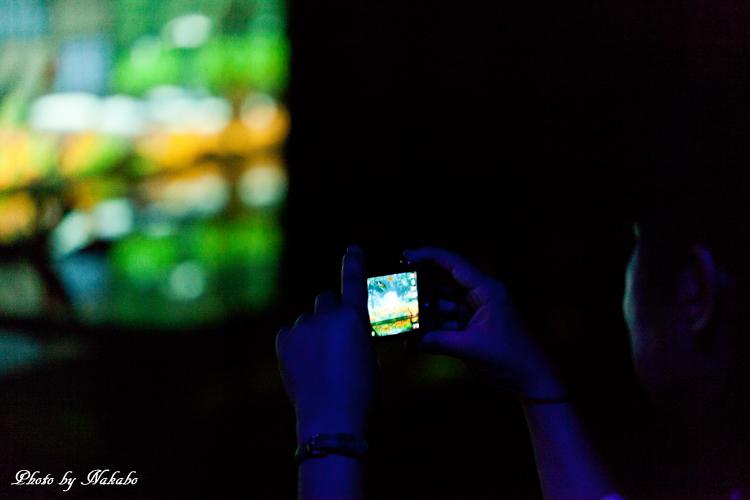 Art_Aquarium_2013-28.jpg