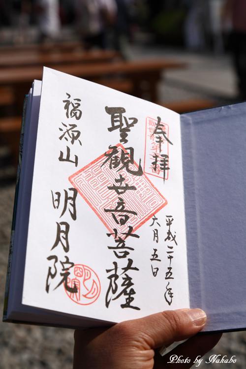 Kamakura_Ajisai_41.jpg