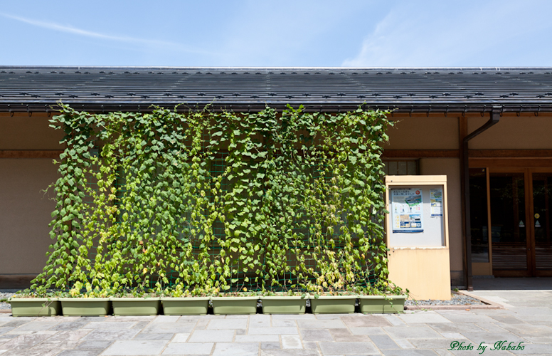 Kanazawa_2013_115.jpg