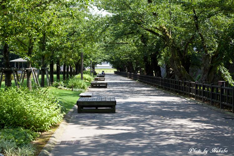Kanazawa_2013_119.jpg