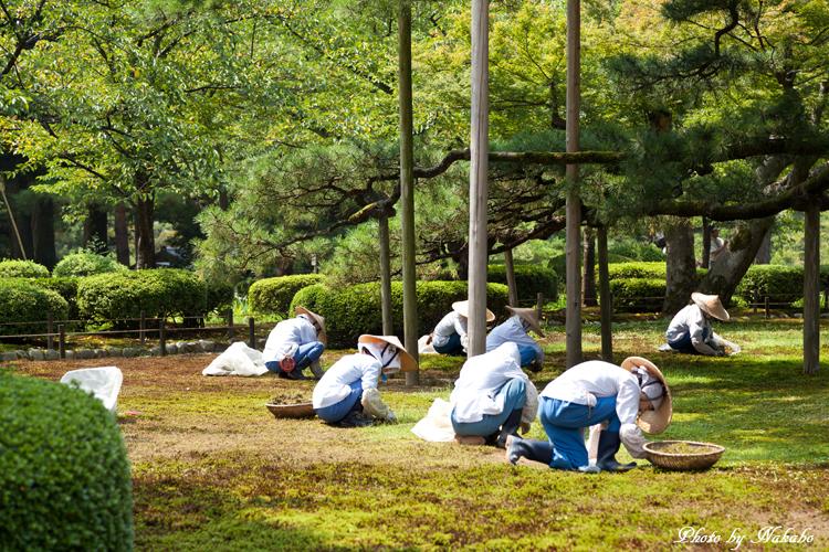 Kanazawa_2013_49.jpg