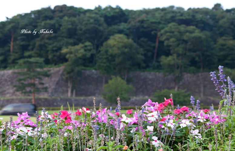 Kanazawa_2013_75.jpg
