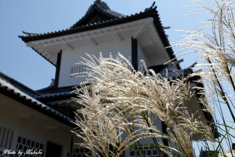 Kanazawa_2013_94.jpg