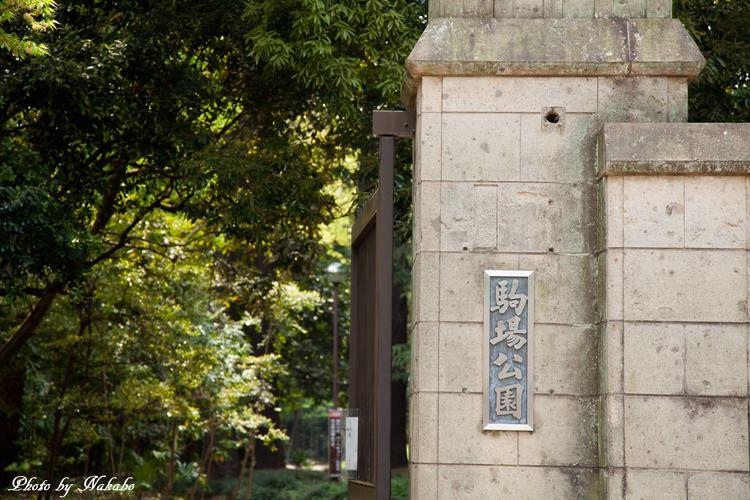 Kyu-Maedatei_2.jpg