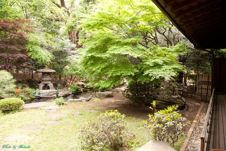 Kyu-Maedatei_35.jpg