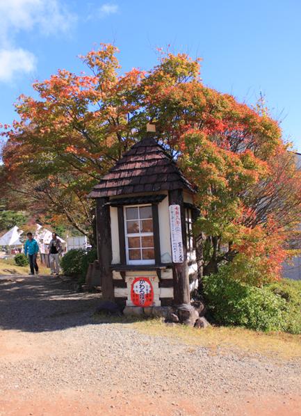 紅葉の瓦屋