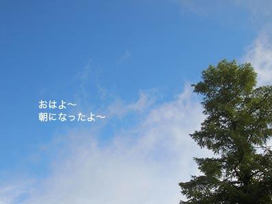130722_1.jpg