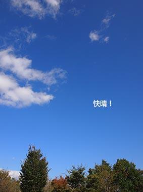 131103_1.jpg