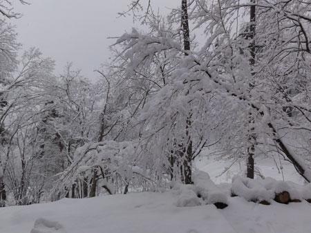 春の大雪!2