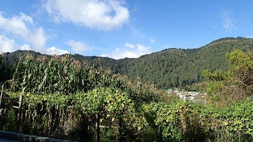 シナカンタン村へ (3)