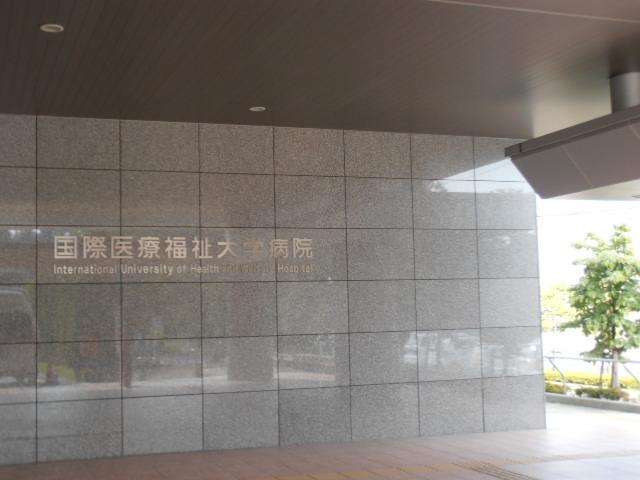P8140781.jpg