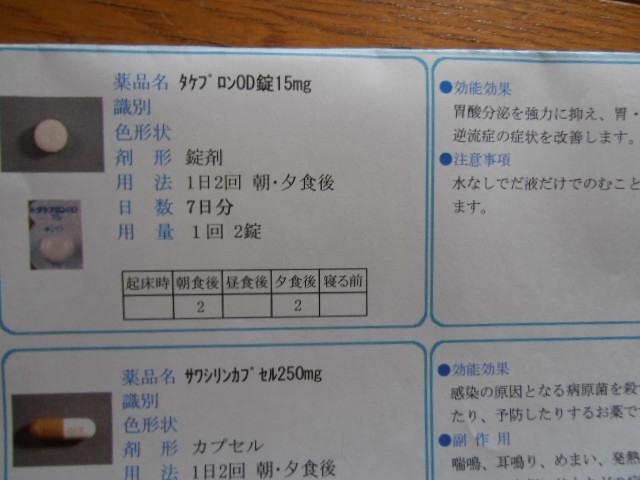 P8160805.jpg