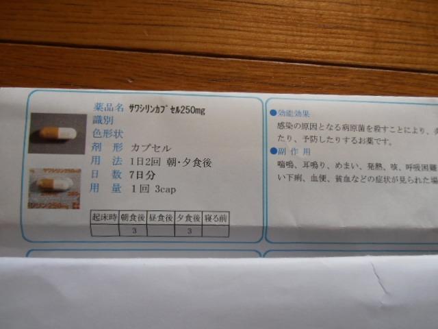 P8160807.jpg