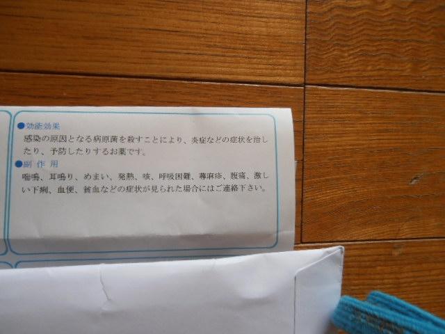 P8160808.jpg