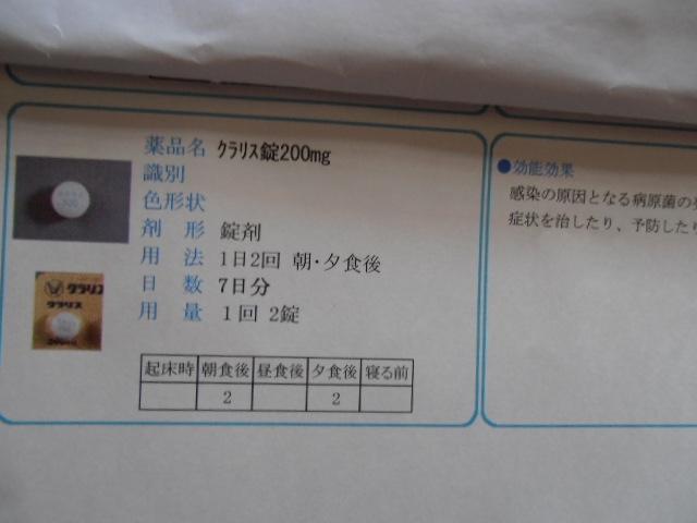 P8160809.jpg
