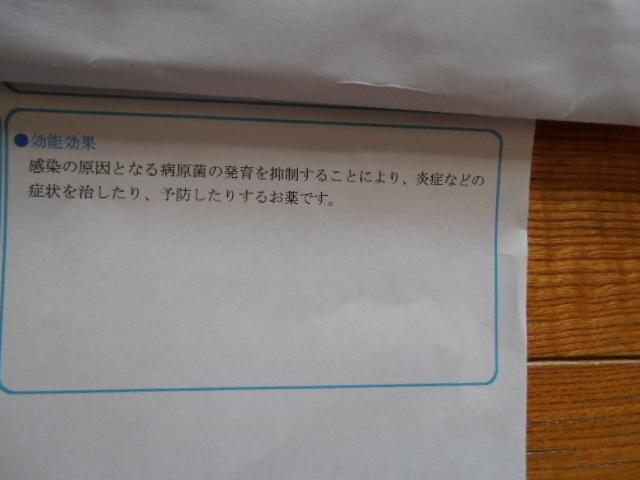 P8160810.jpg