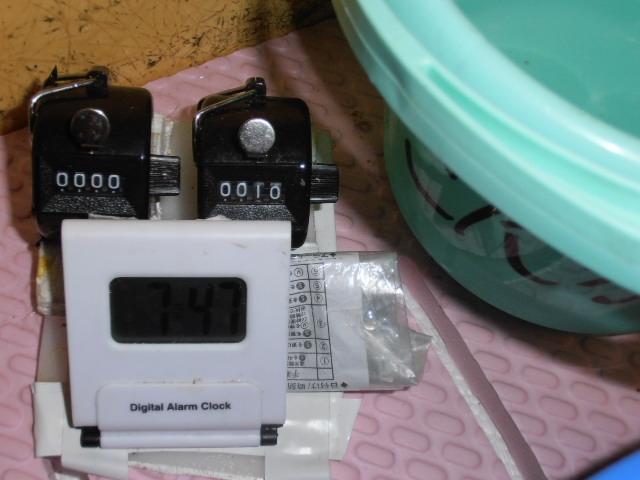 PB081999.jpg