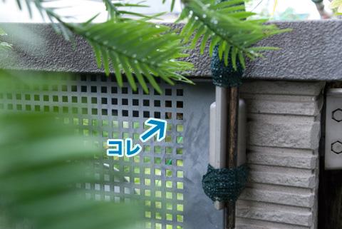 ashinaga2_082413