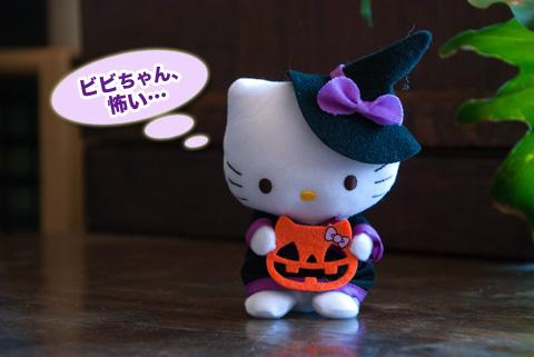 kitty_102713