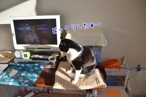 DSC_2549_2.jpg