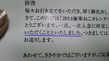 DSC_0175 (4)