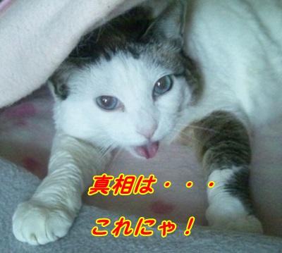 DSC_0176_20130626013108.jpg