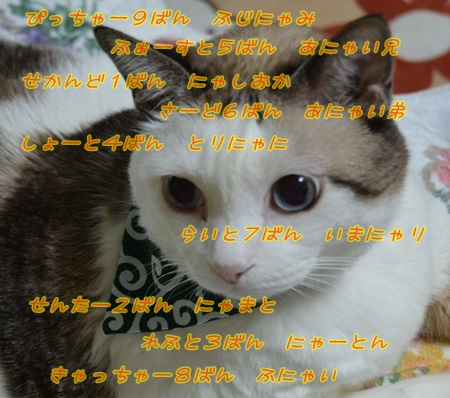 DSC_2466.jpg