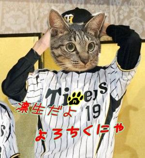 fujimani.jpg