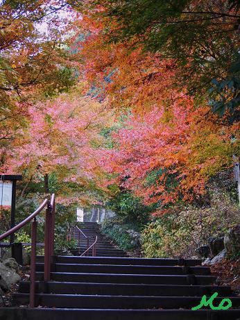 秋川渓谷3