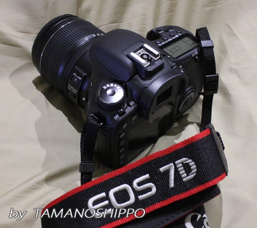 EOS 7D(Myカメラ)