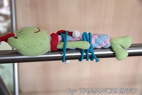 おもちゃの干し方5882
