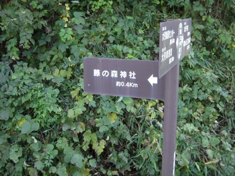 daifuji_02.jpg