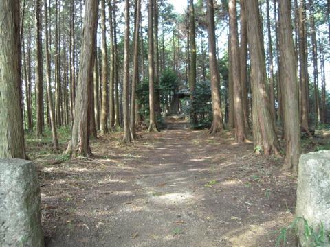daifuji_32.jpg