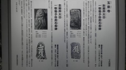 gyo_08.jpg