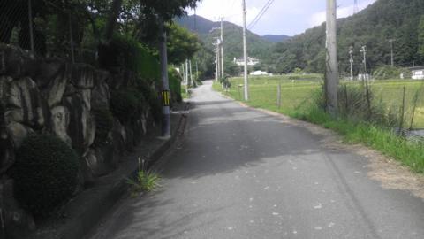 gyo_09.jpg