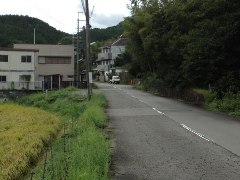 inoko_02.jpg