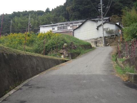 kamaiba_03.jpg