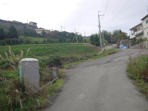 kamaiba_05.jpg