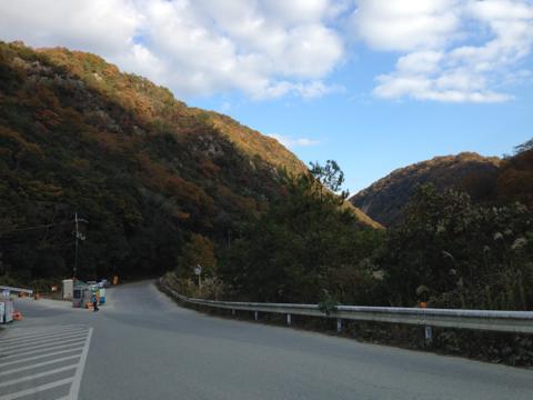 kawashimo_11.jpg