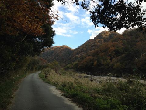kawashimo_12.jpg