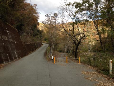 kawashimo_15.jpg