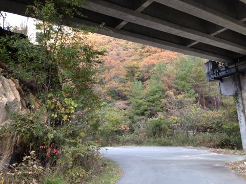 kawashimo_18.jpg